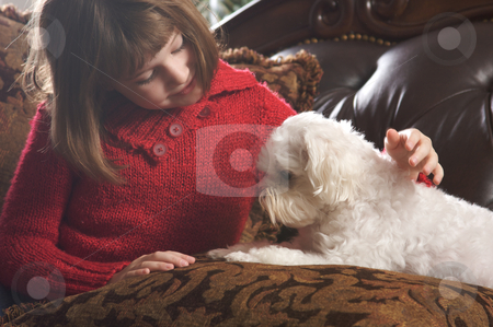 Young Girls with Her Maltese Puppy stock photo, Young Girls Poses with Her Maltese Puppy by Andy Dean