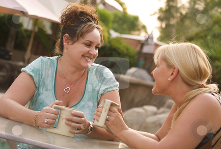 Girlfriends Enjoy A Conversation stock photo, Two Girlfriends Enjoy A Casual Conversation by Andy Dean