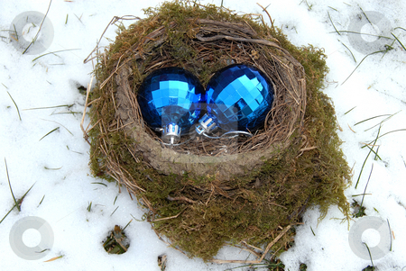 Christmas balls in nest stock photo, Two christmas decorative blue balls in bird nest outdoor at snow by Julija Sapic