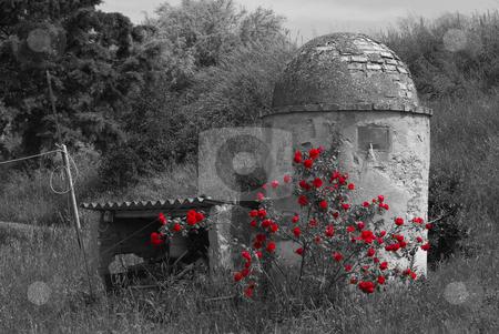 Alter Brunnen/Zisterne in der Toskana - Old Fountain in Tuscany, stock photo, Alter Brunnen/Zisterne in der Toskana - Old Fountain in Tuscany, Italy by Wolfgang Heidasch
