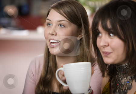 Two women in a Coffee House stock photo, Two pretty young women in a coffee house by Scott Griessel