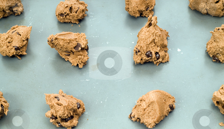 Chocolate Chip Cookies stock photo, Rows of uncooked chocolate chip cookies by Richard Nelson