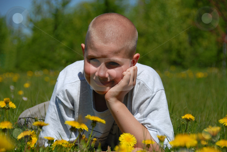 Smiling teen boy on grass stock photo, Young smiling boy resting on green grass and dandelions by Joanna Szycik