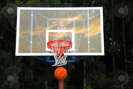 Basketball table stock photo, Basketball table on the background of forest by Joanna Szycik