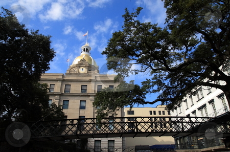 Capital building stock photo, Savannah capital building surrounded by trees and spanish moss by Jack Schiffer