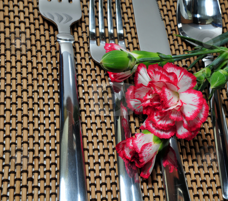 Silverware And A Carnation stock photo, Flatware setting with a pink and white carnation flower by Lynn Bendickson
