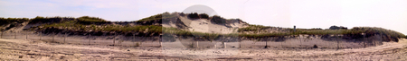 Panorama of Sand Dunes in Sandwich Masachusetts stock photo, Sand Dunes in Sandwich, Cape Cod, Massachusetts by Thomas Marchessault