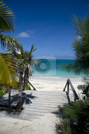Beautiful tropical beach stock photo, Entrance to a beautiful tropical beach with clear green water. by Robert Ranson