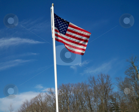 American Flag against a brilliant blue sky stock photo, An American flag proudly flying against a bright blue, slightly cloudy sky, with tree tops in the background by Sandra Fann
