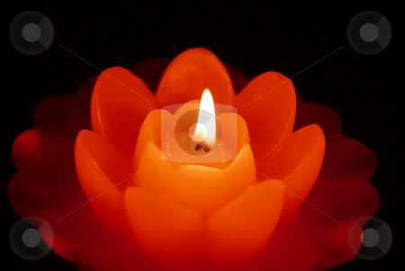 Burning candle stock photo, Three orange burning flower shape candles on dark background by Julija Sapic