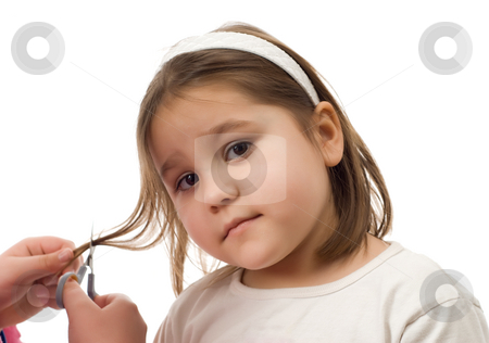 Cutting Hair stock photo, Closeup view of someone cutting a child's hair, isolated against a white background by Richard Nelson