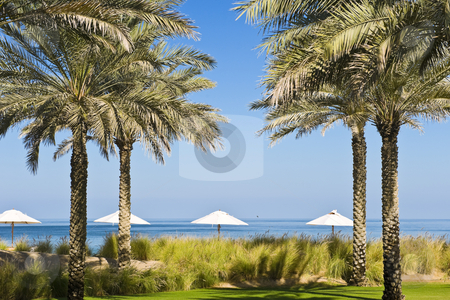 Beautiful garden stock photo, A beautiful garden adjacent to the sea, with water features, palm trees and small structures. by Nicolaas Traut