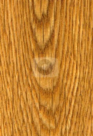 Wood lines pattern close up natural background. stock photo, Wood lines pattern close up natural background. by Stephen Rees