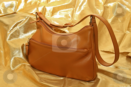 Hand Bag stock photo, Ladies Brown hand bag on golden background by Jack Schiffer