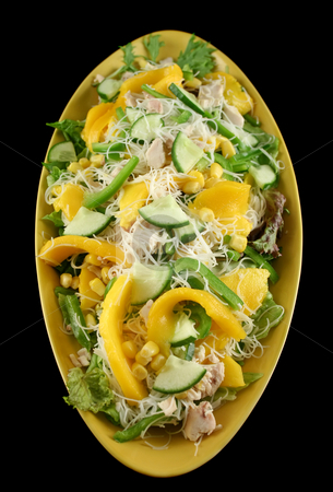 Chicken And Mango Salad stock photo, Delicious and colorful chicken mango and noodle salad. by Brett Mulcahy