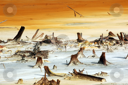 Global Warming stock photo, A picture that depicts what Global Warming can bring us in the near future by Alain Turgeon