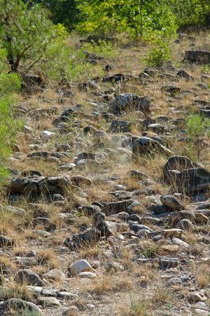 Ein steiniger Weg stock photo, Ein steiniger Weg by Wolfgang Heidasch