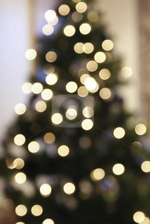 Christmas Tree Bokeh stock photo,  by Adrian Mace
