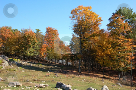 Autumn's landscape stock photo, A beautiful fall landscape with a bright blue sky by Alain Turgeon