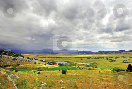 Rural  landscape stock photo, Green meadow and firs on hill over gray sky by Julija Sapic