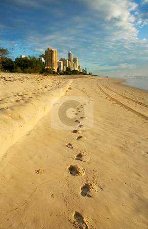 The Way To Surfers Paradise stock photo, Footprints in the sand lead the way to Surfers Paradise Gold Coast Australia just after dawn. by Brett Mulcahy