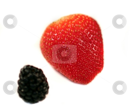 Strawberry Blackberry stock photo, Red strawberry with blackberries on white or light background. by Henrik Lehnerer