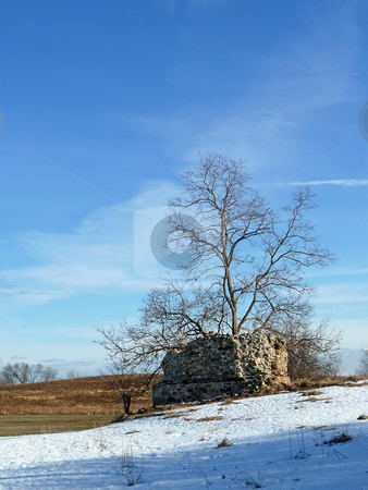 Barn ruins with tree stock photo,  by J.G. Byers