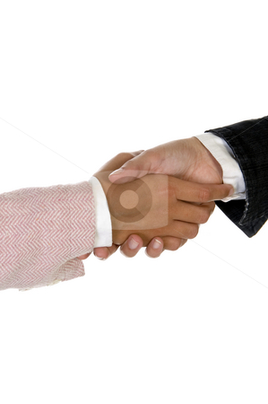 Shaking hands stock photo, Shaking hands against white background by Imagery Majestic