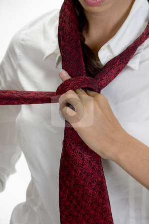 Young pretty woman tying her tie stock photo, Young pretty woman tying her tie against white background by Imagery Majestic