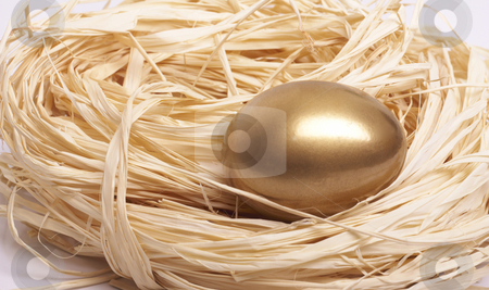 Nest Egg stock photo, Gold egg in nest close-up by Gary Cookson