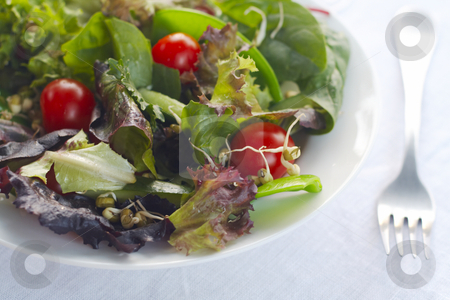 Salad in white bowl closeup stock photo, Closeup of salad on linen tablecloth by Gary Cookson