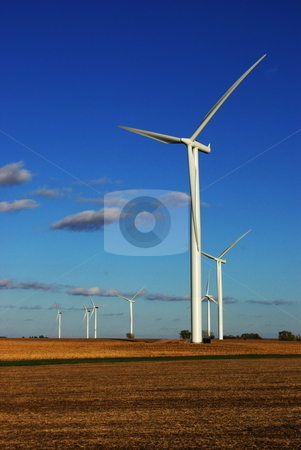 Wind power stock photo, A cluster of wind turbines at work on southern Minnesota farmland. Alternative energy sources like this are expected to receive emphasis in coming years by Dennis Thomsen