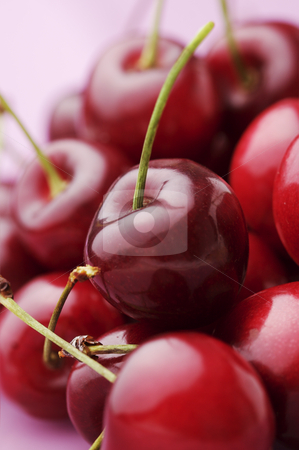 Cherries stock photo, Bunch of fresh,juicy, ripe cherries, shallow dof by Liv Friis-Larsen