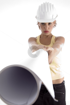 Female with architect helmet and blue prints stock photo, Female with architect helmet and blue prints on an isolated background by Imagery Majestic