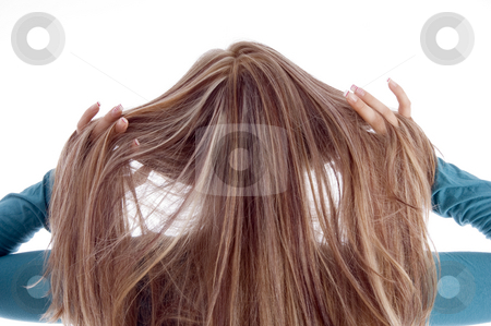 Hair of blonde woman stock photo, Hair of blonde woman on an isolated background by Imagery Majestic