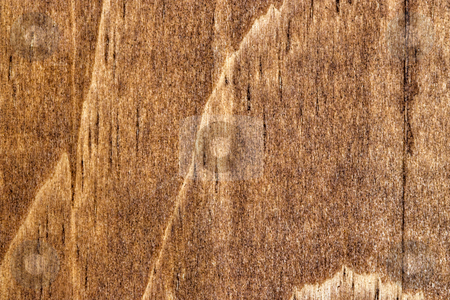 Wood Grain 1 stock photo, A detailed photo of wood grain. The grain and texture of the wood is very prominent. by Stephen Bonk