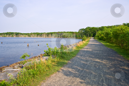 Lake and Gravel Road stock photo, The shoreline of a reservoir or lake with a gravel road at the border by Stephen Bonk