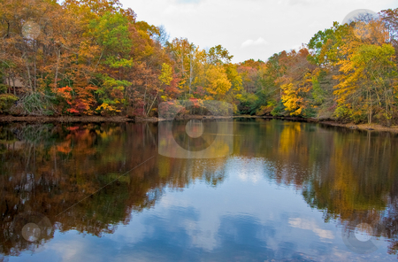 Lake and Trees in Autumn stock photo, A calm lake and colorful trees in the fall by Stephen Bonk