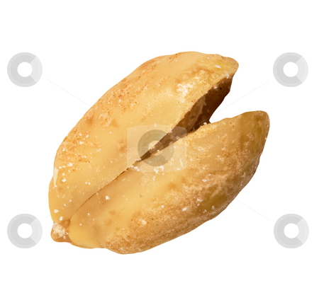 Peanut stock photo, A peanut isolated on a white background by Stephen Bonk