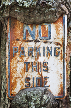 No Parking This Side stock photo, An old No Parking sign using a tree as the sign post by Stephen Bonk