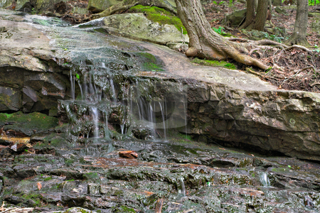 Water on Rocks in Forest stock photo, Details of water flowing down mossy rocks in the forest. by Stephen Bonk