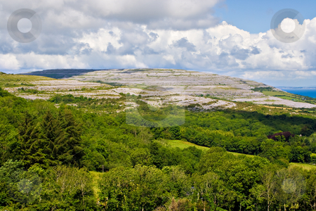 Ireland Landscape of The Burren stock photo, Green trees in foreground followed by a large hill of The Burren in County Clare, Ireland by Stephen Bonk