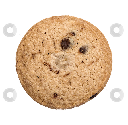 Chocolate Chip Cookie stock photo, A single chocolate chip cookie isolated on a white background by Stephen Bonk