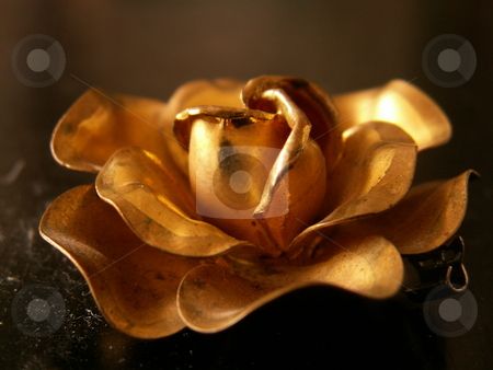 Gold flower stock photo,  by Sarka