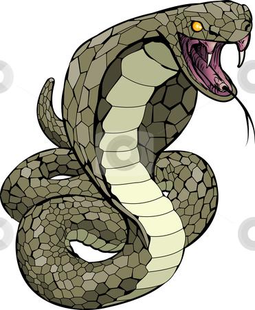 Cobra snake about to strike illustration stock vector clipart, A Cobra snake about to strike illustration by Christos Georghiou