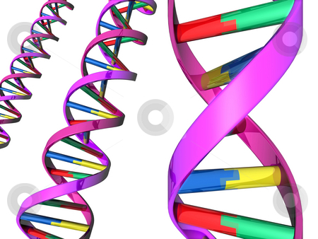 Illustration of DNA double helix stock photo, Illustration of colorful DNA double helixes by Christos Georghiou