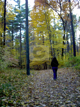 Walking In The Woods stock photo, A girl, taking a peaceful stroll through the forest. by Todd Arena