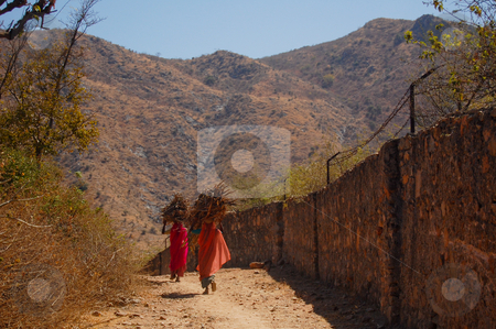 Women of Rajasthan stock photo, The arid and dry landscape of the surrounding stays in contrast with the colorfull dress of the women of Rajasthan, Norther India... by Piero Biondo