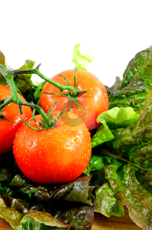 Tomatoes And Lettuce stock photo, Tomatoes and Lettuce on a cutting boar by Lynn Bendickson