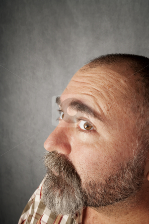 Profile closeup of man in his 40s stock photo, Profile closeup of a man in his forties with mustache by Scott Griessel
